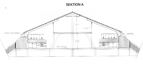 Sektion